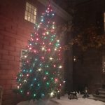 Outside Courtyard Christmas tree